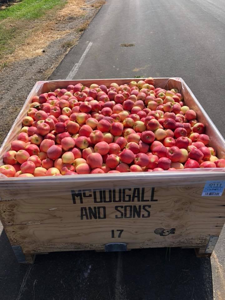 One huge crate of apples, all tracked through FieldClock