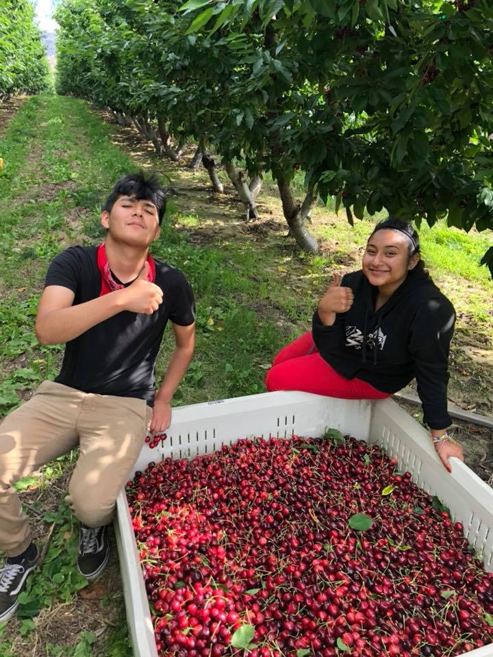 A couple happy FieldClock cherry pickers